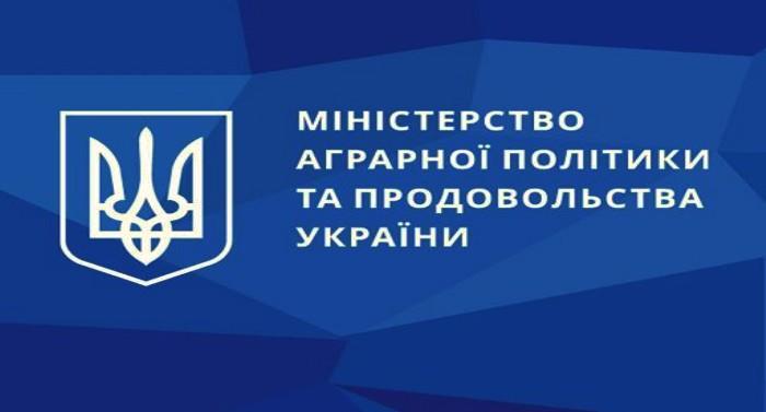 Minahropolityky-zatverdylo-formy-dokumentiv-iz-pidhotovky-otsinyuvachiv